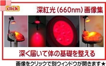 深紅光(660nm)画像集 深く届いて体の基礎を整える